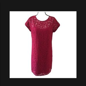 LOFT Shift Red Lace Dress Short Sleeves  Size 8